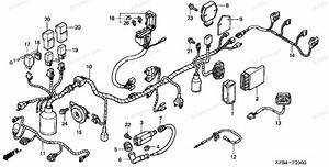 Honda Scooter 2001 Oem Parts Diagram For Wire Harness  1