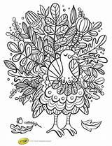 Thanksgiving Coloring Pages Turkey Printables Printable Sheets Activity Fall Parties Birthday Activities Colouring Foliage Crafts Entertain Books Interactive Fun Adult sketch template