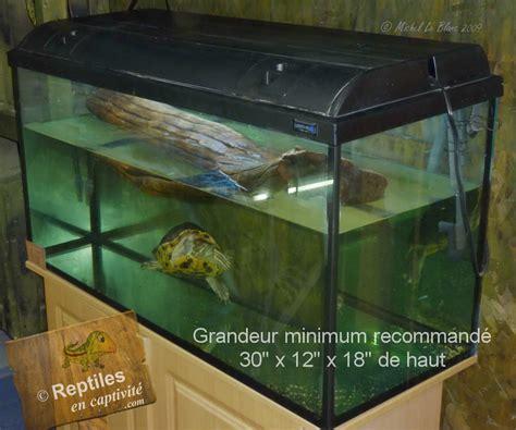 reptiles en captivit 233 s tortue 224 tempes rouges