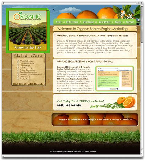 Organic Search Engine Marketing affordable website design and development freelance web