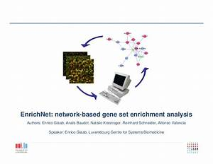 EnrichNet: Graph-based statistic and web-application for ...