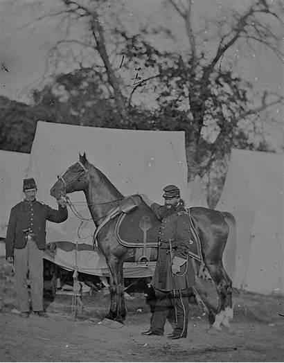 Horses Officers Posing Shadow History Chubachus War