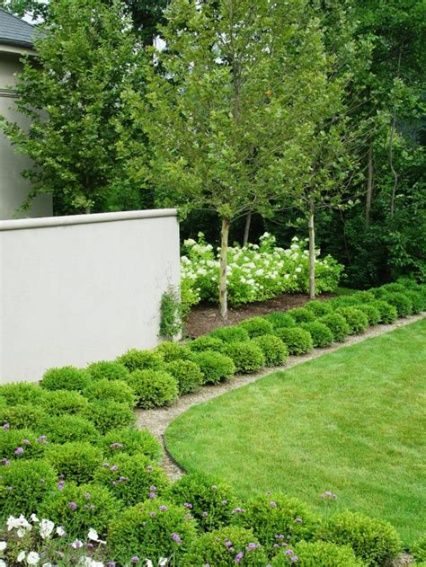 beautiful boxwood garden ideas style motivation