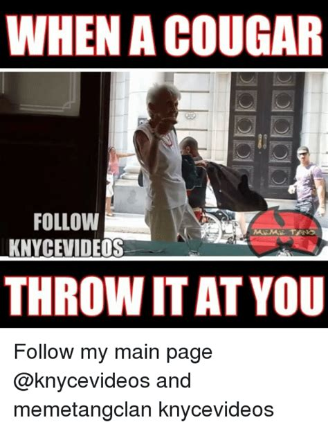 Cougar Memes - when a cougar follow meme tana knycevideos throw itat you follow my main page and memetangclan