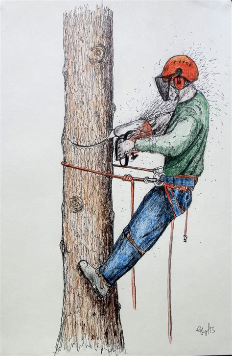 A4 print of sketch Arborist Tree Surgeon Tree Climber stihl