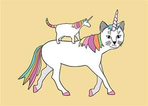 cat a unicorn posts andy erikson