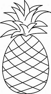 Pineapple Outline Drawing | Free download on ClipArtMag