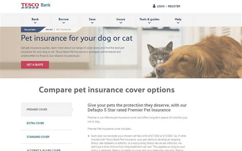 Embrace offers pet insurance for cats and dogs with transparent pricing and customizable policies that include prescriptions and. Best Pet Insurance For Dogs Lifetime Cover - PetsWall