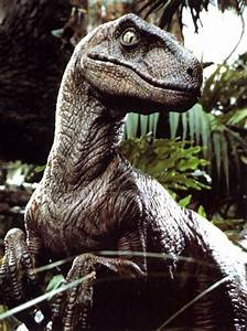 Which dinosaur does the velociraptor from Jurassic Park ...