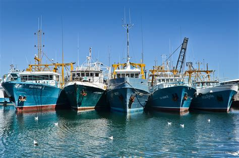 Boat Harbor by Boat Harbour Australia Pictures And And News