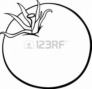 Tomato clipart black and white - Pencil and in color ...