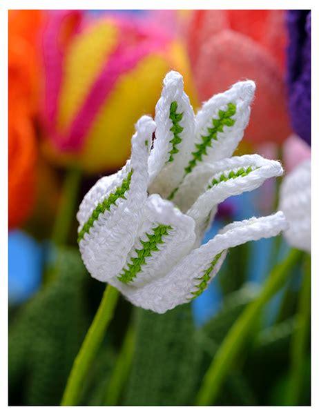 bloemen haken breien boek bloemen haken forte creatief