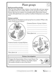 Our 5 Favorite Prek Math Worksheets  Activities, First Grade Science And Science