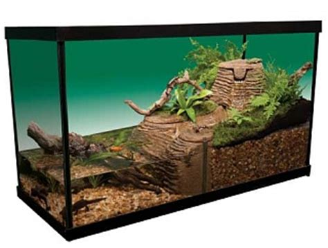 land and water aquarium how to divide an aquarium half water half land page 2 aquarium advice aquarium forum