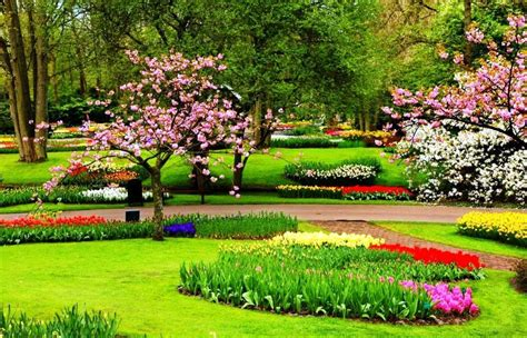 gambar taman bunga indah pernik dunia