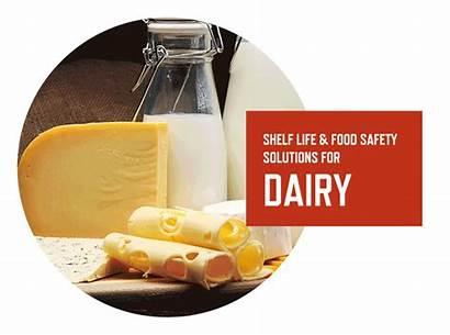 Dairy Market Milk Foods Bakery Beverages Meat
