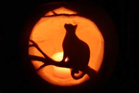 jackolatern patterns cat jackolantern halloween2011 jack o lantern patterns litle pups