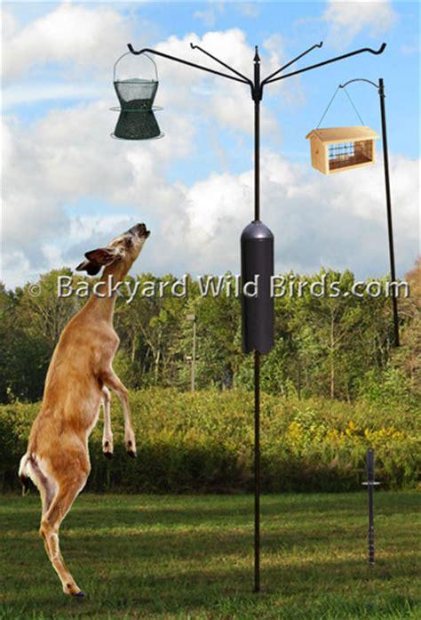 bird feeder pole bird feedersbird feeders