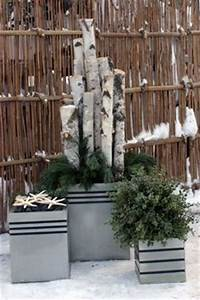 1000 ideas about Winter Container Gardening on Pinterest