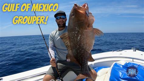 gulf jigging grouper mexico catching