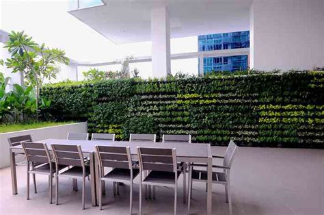 Vertical Garden Brisbane by Greenwall Vertical Gardens Brisbane Coast