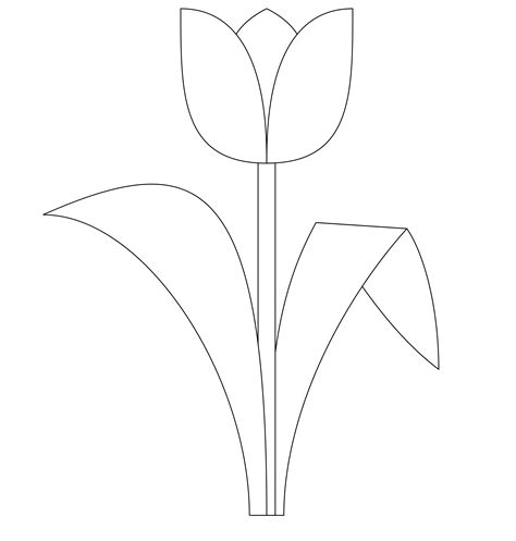 Coloring Templates Printable by Free Printable Tulip Coloring Pages For