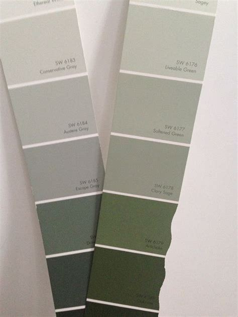Sherwin Williams Clary Sage Paint Color Appears Green