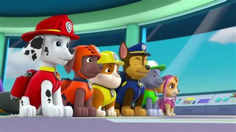 Marshall, Rubble, Chase, Rocky, Zuma And Skye In