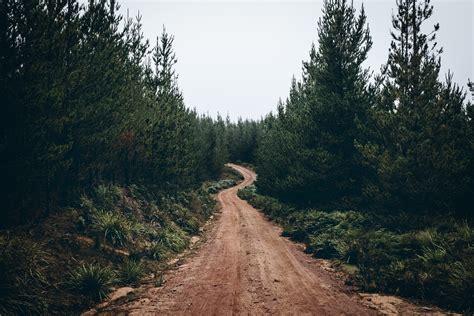 Dirt Road · Free Stock Photo
