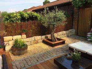 Olivenbaum Im Wohnzimmer überwintern : berwinterung olivenbaum olivenbaum berwintern aber wie ~ Markanthonyermac.com Haus und Dekorationen