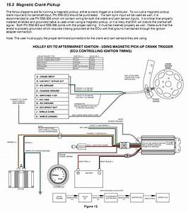 Holley Wiring Diagram 558