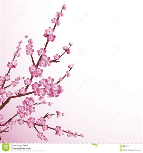 japanese cherry blossom design cherry blossom stock images image 9110754 art pinterest cherry blossoms floral
