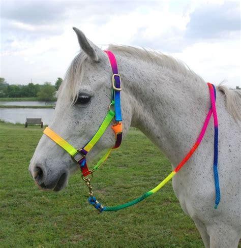 lead horse rope rainbow halter horses halters hardware tack ropes headcollar brass striking foot riding pretty wild coloured fly led