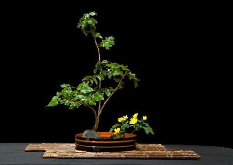 ikebana international exhibition portland japanese garden