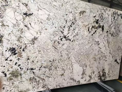 Splendor White Granite Countertops Slabs Manufacturers and