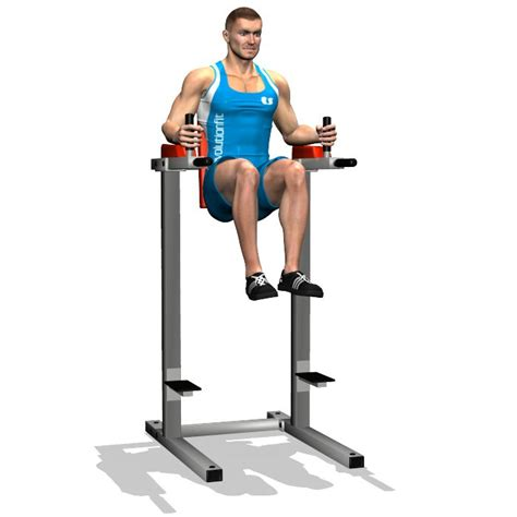 chaise romaine abdo 78 best images about free standing pull up bar on
