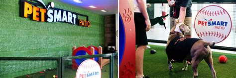 petsmart patio at field all for the boys