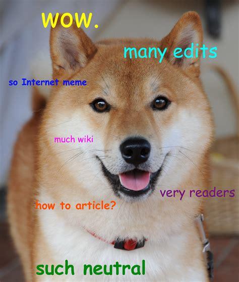 What Is Doge Meme - file doge homemade meme jpg wikimedia commons