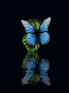 Animated Butterfly Wallpaper For Mobile - animated butterfly wallpaper for mobile