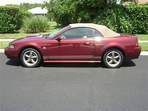 Purchase Used 2004 Ford Mustang Gt Convertible 2