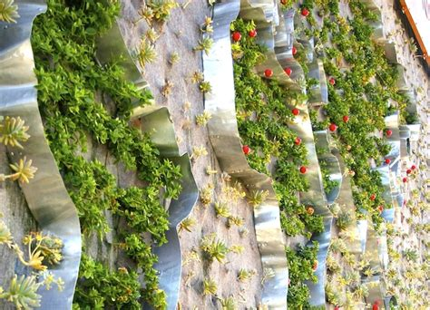 Garden Decoration South Africa by South Africa S Vertical Garden By Tractor Outdoor