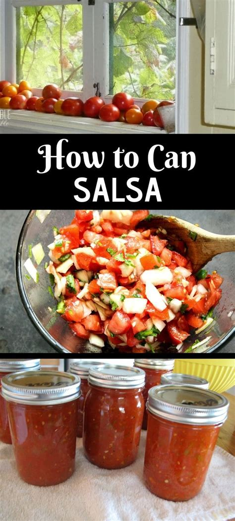 Homemade salsa recipe using fresh tomatoes! Canning salsa is easy to do and is a great way to preserve tomatoes. It requires a simple water ...