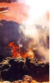 Schnell Wachsende Büsche : lanzarote timanfaya nationalpark feuerberge lava vulkane ~ Whattoseeinmadrid.com Haus und Dekorationen