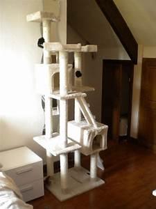 Arbre A Chaton : shopping arbre chat chroniques de chat ~ Premium-room.com Idées de Décoration