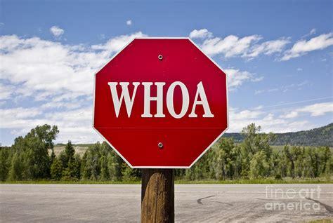 Whoa Stop Sign Photograph By Rafael Macia