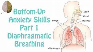 Diaphragmatic Breathing  Anxiety Skills  12