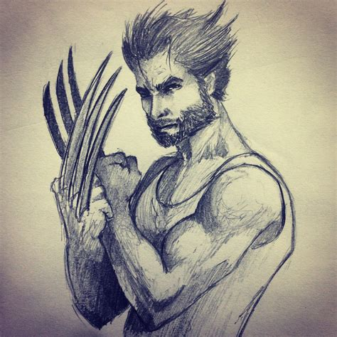 Wolverine Sketch By Ninjason57 On Deviantart