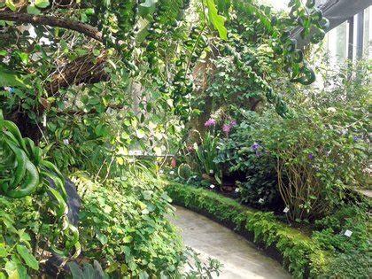 Kakteenschau Botanischer Garten Leipzig by Ausstellung Im Botanischen Garten Widmet Sich Der Jagd