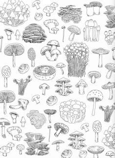 I have just released a strictly limited run of 30 prints of these A3 flash sheets now available