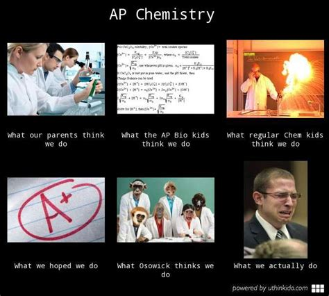Ap Lit Memes - 87 best ap chemistry memes images on pinterest science jokes chemistry and chemistry jokes